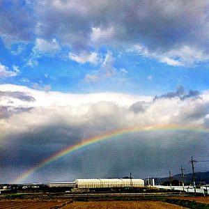 今日の1曲♪電気グルーヴ「虹」この雨がやんだら……