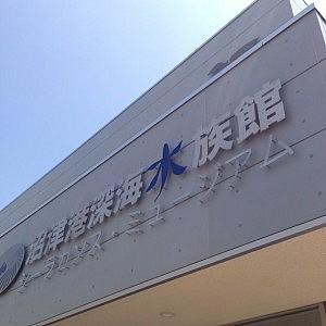 世界で唯一冷凍のシーラカンスが見れる沼津港深海水族館に行ってきたよ