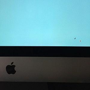 iMac 27インチ(Late 2012)にバグ(虫)が!どうしたらいいの?